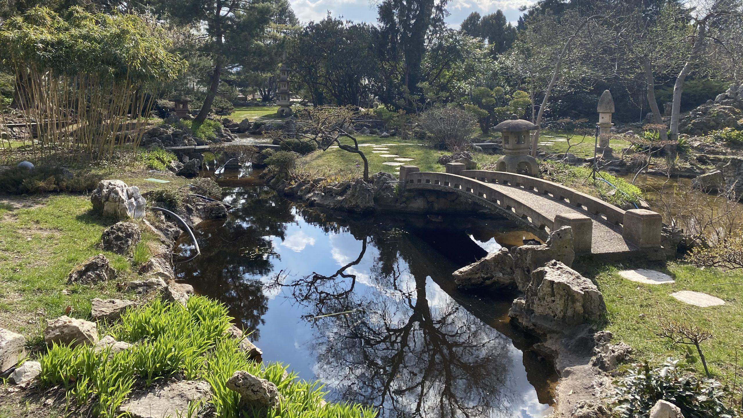 Mindent a japánkertekrol, hasznos tippek kezdo futóknak és olvasschallenge Gubik Petra színésznovel